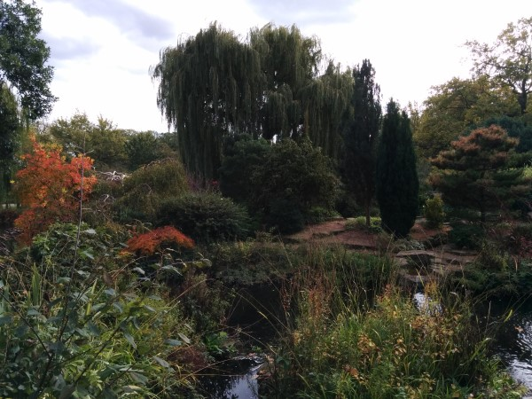 Did You Know There's a Hidden Waterfall & Japanese Garden In Regent's Park?