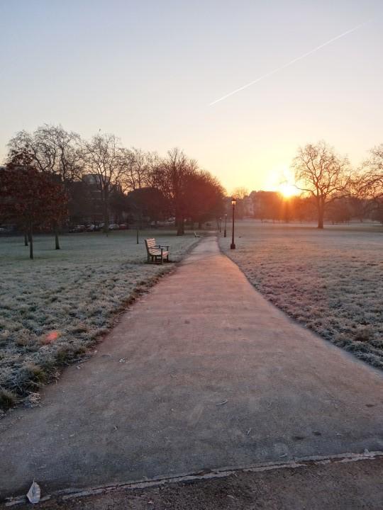 Primrosehill-sunrise-4